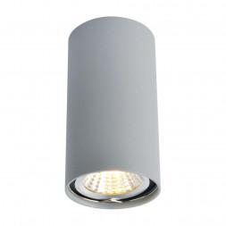 Потолочный светильник Arte Lamp A1516PL-1GY