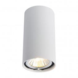 Потолочный светильник Arte Lamp A1516PL-1WH