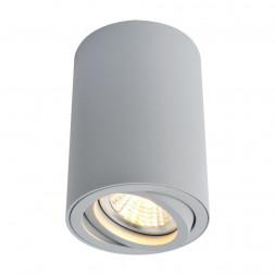Потолочный светильник Arte Lamp A1560PL-1GY