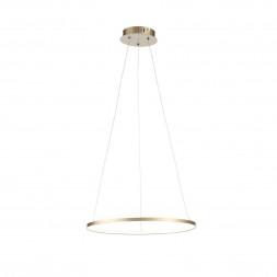 Подвесной светодиодный светильник ST Luce Erto SL904.203.01