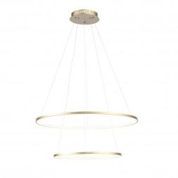 Подвесной светодиодный светильник ST Luce Erto SL904.203.02