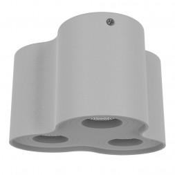 Потолочный светильник Lightstar Binoco 052039