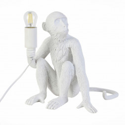 Настольная лампа Evoluce Tenato SLE115104-01