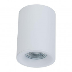 Потолочный светильник Maytoni Alfa C012CL-01W