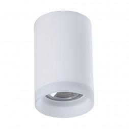 Потолочный светильник Maytoni Pauline C008CW-01W