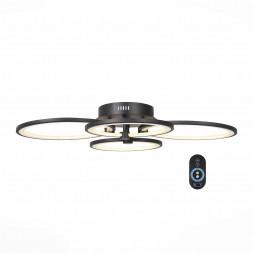 Потолочная светодиодная люстра ST Luce Twiddle Dimmer SL867.402.04
