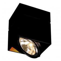 Потолочный светильник SLV Kardamod Square QRB Single 117120