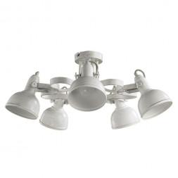 Потолочная люстра Arte Lamp Martin A5216PL-5WG