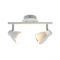 Светодиодный спот Arte Lamp Gioved A6008PL-2WH