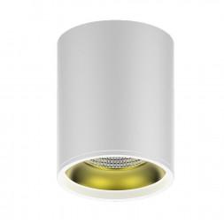 Потолочный светодиодный светильник Gauss Overhead HD010