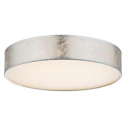Потолочный светодиодный светильник Globo Amy I 15188D1