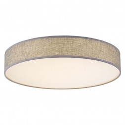 Потолочный светодиодный светильник Globo Paco 15185D2