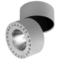Потолочный светодиодный светильник Lightstar Forte 381394