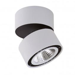 Потолочный светодиодный светильник Lightstar Forte Muro 213839