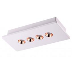 Потолочный светодиодный светильник Novotech Caro 357941