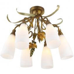 Потолочная люстра Arte Lamp Tipico A8935PL-6GA