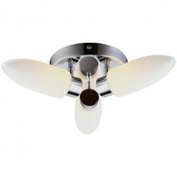 Потолочная люстра Arte Lamp Aqua A9502PL-3CC