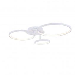 Потолочный светодиодный светильник ST Luce Erto SL904.112.03
