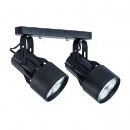 Спот Arte Lamp A6252PL-2BK