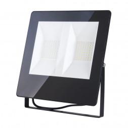 Прожектор светодиодный Elektrostandard 011 FL LED 100W 6500K 4690389126840