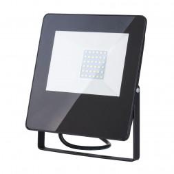 Прожектор светодиодный Elektrostandard 013 FL LED 30W 6500K 4690389126826