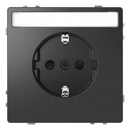 Розетка Schneider Electric Merten D-Life 16A с/з MTN2302-6034