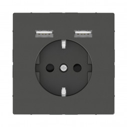 Розетка компьютерная USBx2 Schneider Electric Merten D-Life MTN2366-6034