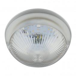 Уличный светодиодный светильник (UL-00002104) Uniel ULW-R05 12W/DW IP64 White