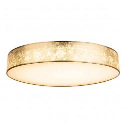Потолочный светодиодный светильник Globo Amy 15187D4