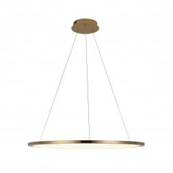 Подвесной светодиодный светильник Loft IT Ring 10014L