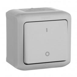 Выключатель одноклавишный двухполюсный Legrand Quteo 10A 250V IP44 серый 782339