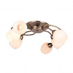 Потолочная люстра Arte Lamp Silvana A4033PL-6AB