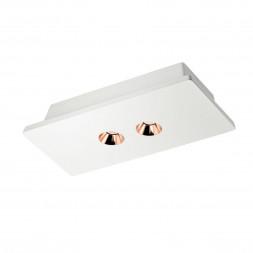 Потолочный светодиодный светильник Loft IT Architect OL1072-WG/2