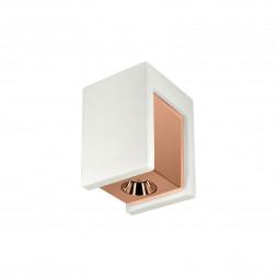 Потолочный светодиодный светильник Loft IT Architect OL1073-WG