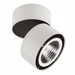 Потолочный светодиодный светильник Lightstar Forte Muro 213850