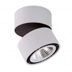 Потолочный светодиодный светильник Lightstar Forte Muro 214839