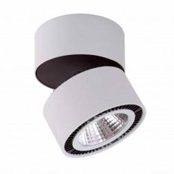 Потолочный светодиодный светильник Lightstar Forte Muro 214859