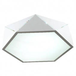 Потолочный светодиодный светильник Omnilux OML-45307-26
