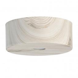 Потолочный светодиодный светильник De Markt Иланг 5 712010601