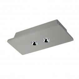 Потолочный светодиодный светильник Loft IT Architect OL1072-GH/2