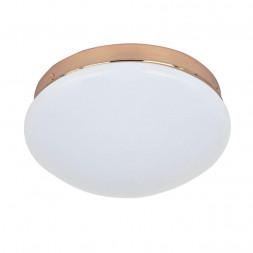 Потолочный светодиодный светильник F-Promo Ledante 2465-1C