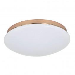 Потолочный светодиодный светильник F-Promo Ledante 2465-2C