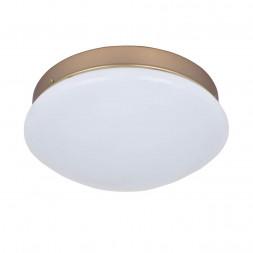 Потолочный светодиодный светильник F-Promo Ledante 2466-1C