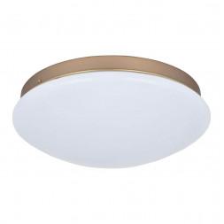 Потолочный светодиодный светильник F-Promo Ledante 2466-2C