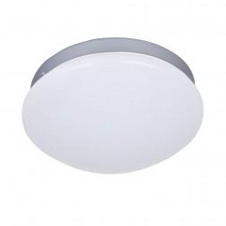 Потолочный светодиодный светильник F-Promo Ledante 2467-1C