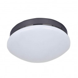 Потолочный светодиодный светильник F-Promo Ledante 2468-1C