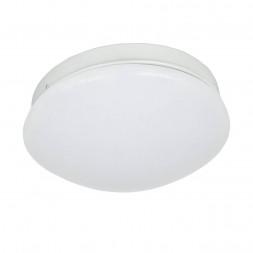 Потолочный светодиодный светильник F-Promo Ledante 2469-1C