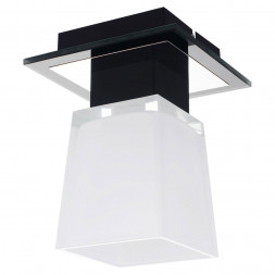 Потолочный светильник Lussole Lente LSC-2507-01