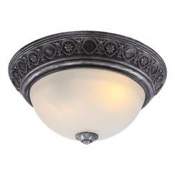 Потолочный светильник Arte Lamp Piatti A8009PL-2SB