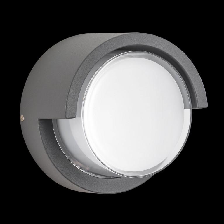Уличный настенный светодиодный светильник Lightstar Paletto 382194